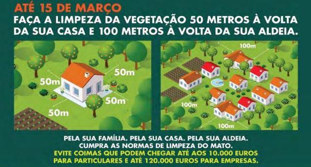 Proprietários têm até 15 de março para limpar terrenos, ou pagam multa